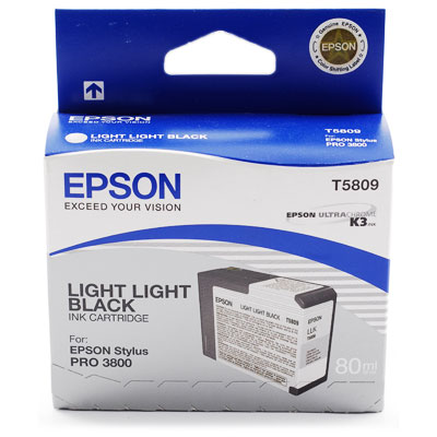Epson T5809 Light Light Black Original Epson C13T580900